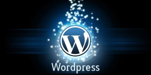 wordpress_CMS1