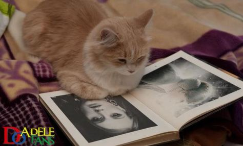 This picture was captured by www.adele,tv,