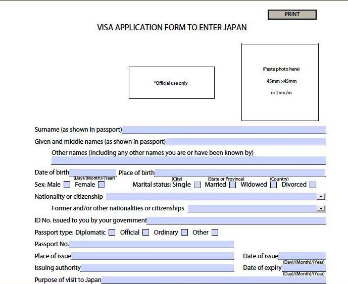 APPLYING JAPAN VISA | Emotion at Peek